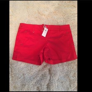 Women's Sexy Cache Shorts Size 10